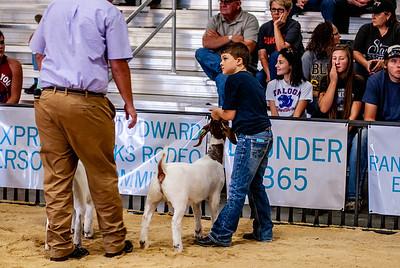 20180826_western_shootout_goats-20