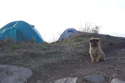 hiking  camping in around Beijing