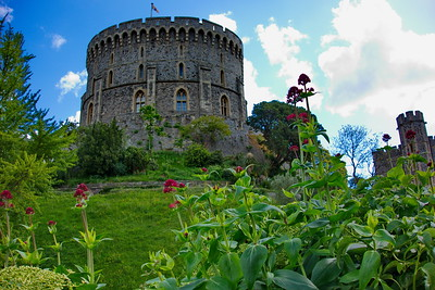 Windsor_Castle_Flowers&Turret_DSC2208