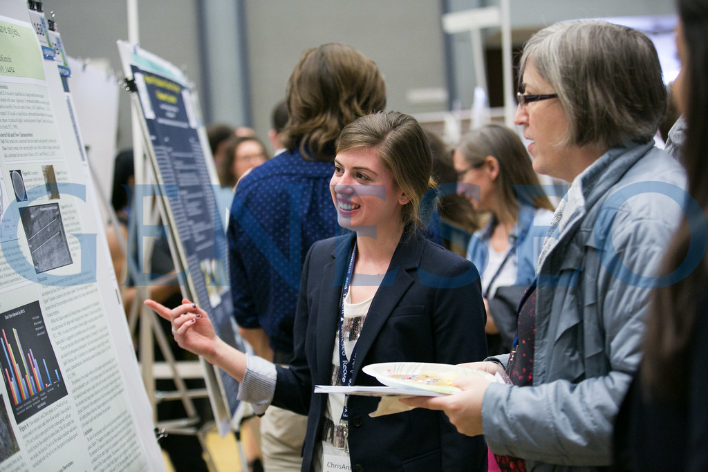 Poster Presentations by Chrisanne Ross