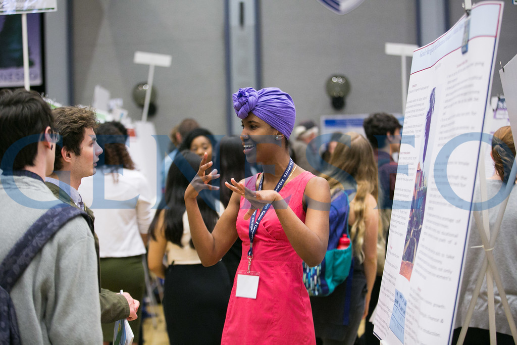 Poster presentations by Hershley Nelson '17