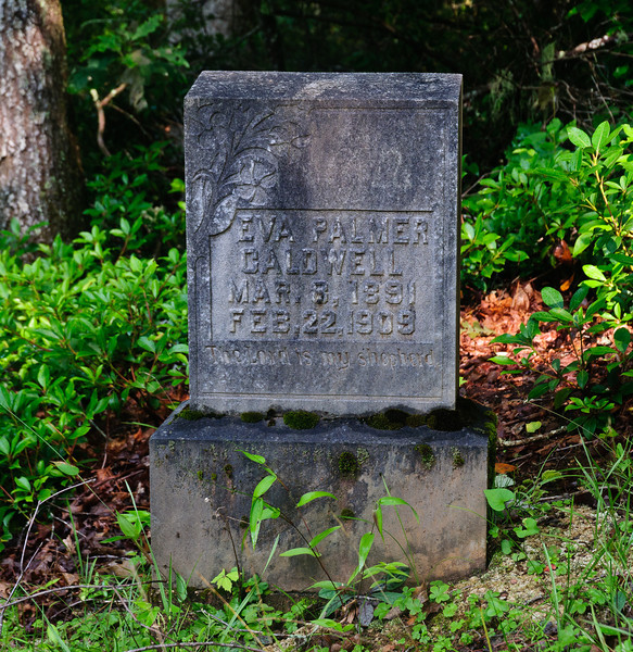 Tombstone in the Caldwell Family cemetery