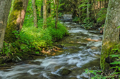 Abrams Creek rushes through Cades Cove
