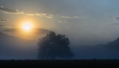 A foggy dawn in Cades Cove.