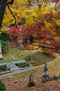 Looking down on several graves at Mount Auburn Cemetery.