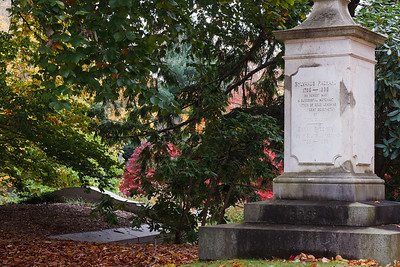 The grave of Sylvanus Packard, surrounded by foliage in Mount Auburn Cemetery.