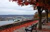 Fall Overlook<br /> Eden Park<br /> <br /> On the DVD for Capture Cincinnati 2009