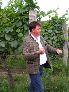 Sean the fearless wine guide.  Never seen a vine he couldn't prune.