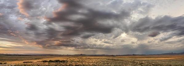 Chino Grasslands