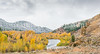 Fall color on the Gros Ventre teton NP