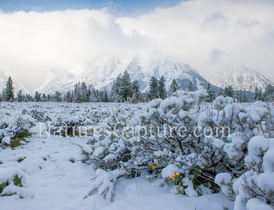 Spring storm in the Tetons