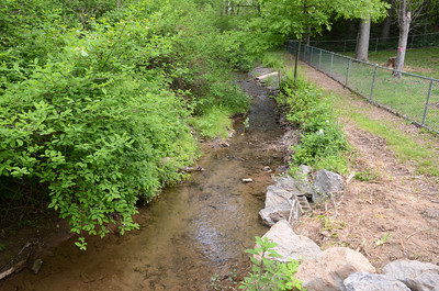 There is a creek that runs behind the fenced in area at the Shamokin Dam dog park for dogs to play in.