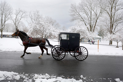 A horse and buggy cruises past Community Park in Mifflinburg on Thursday morning.