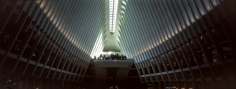 inside the Oculus - World Trade Center Station - NY