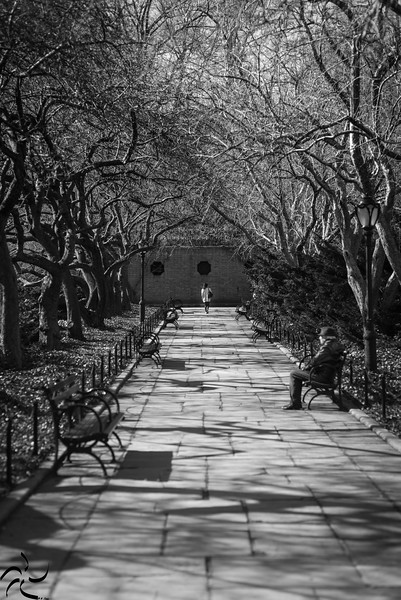 Escape alley - Central Park - NY