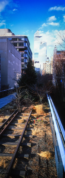 vegetation, iron and glass - High Line - NY