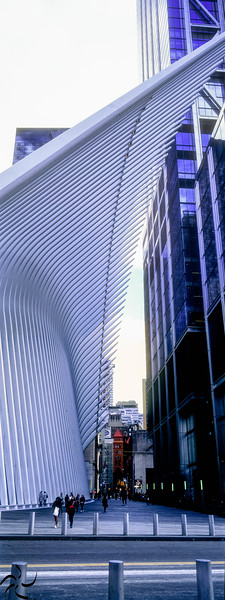 Wales bones - World trade center station - NY