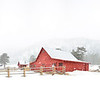 Happy Holidays from Caribou Ranch!!  The family and I took a wonderful snow hike up to this barn just West of Nederland, CO