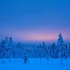 """Dämmerung bei Vittjåkk - Arvidsjaur,  Lappland, Schweden<br /><br />  Twilight near Vittjåkk - Arvidsjaur,  Lapland, Sweden<br /><br /> - mehr dazu im Blog: <br /><a href=""""http://arnohelfer.wordpress.com/2013/01/06/winter-in-lappland/"""">Winter in Lappland</a><br />"""
