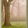 April 27, 2009<br /> Early Morning Fog...
