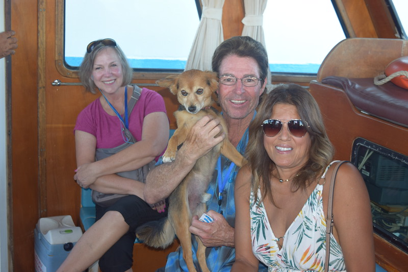 Leave it to Jackson to find the stowaway pup on the Tender Boat to Mykonos