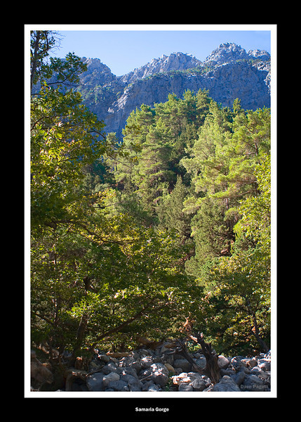 Samaria Gorge, White Mountains