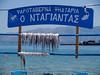 octopus, Χταπόδι, Elafonisos village, Lakonia, Greece<br /> <br /> E-420 & Zuiko 12-60/2.8-4.0