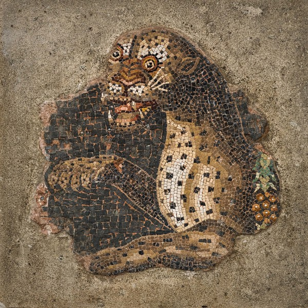 Mosaic of Leopard