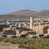 Panorama of Delos