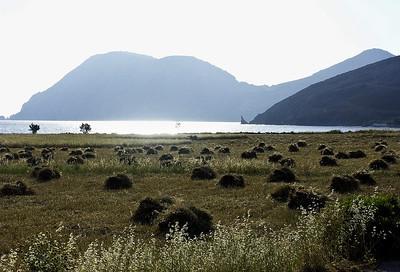 greece-island-hay