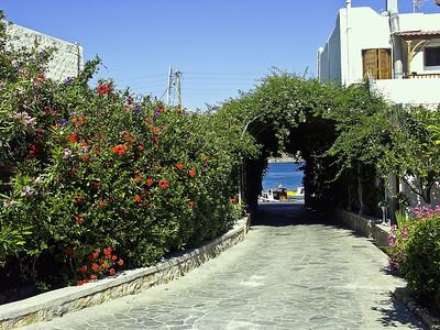 patmos-flowers