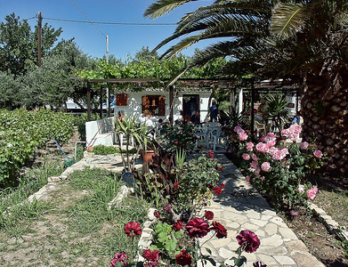 greece-house-flowers