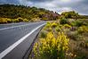 A highway through  roadside yellow flowers near Aereopoli, Greece.