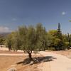 Mycenae_1309_4497422