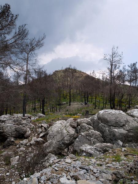 Interior of Rhodos, between Laerma and Apollona