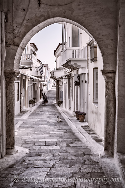 20170722_Andros_3544