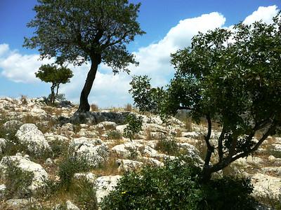 Greece: Mycenae
