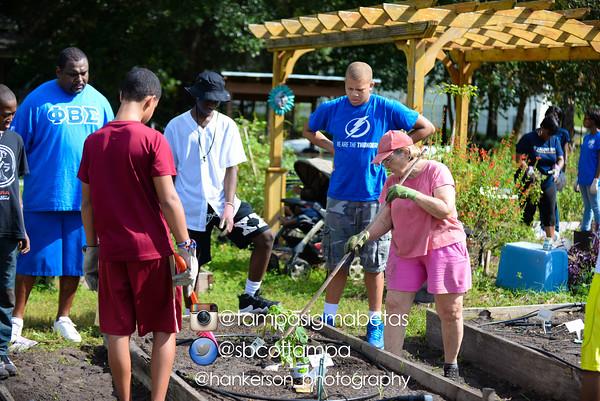 Community Garden 9/19