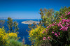 Spring flowers and a view of the Mirambelou gulf in eastern Crete, Greece.