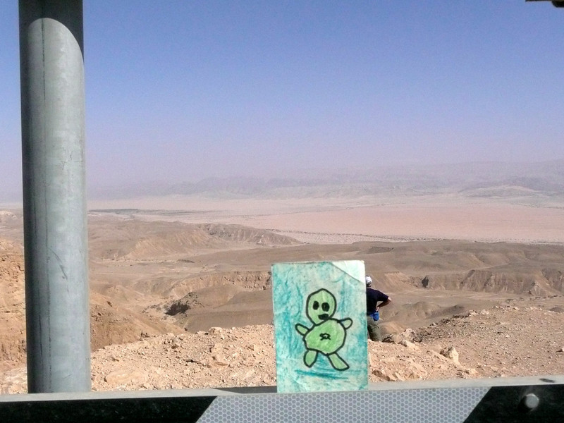 Green Man Traveller, Negav Desert, West Bank Israel