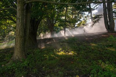 Arboretum0823-8