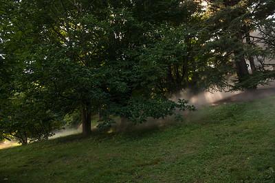 Arboretum0823-18