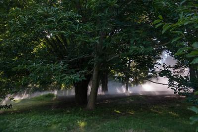 Arboretum0823-27