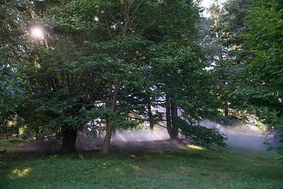 Arboretum0823-29