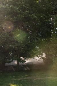 Arboretum0823-4