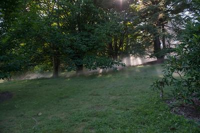 Arboretum0823-24