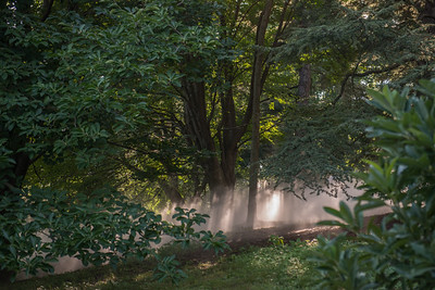 Arboretum0823-23