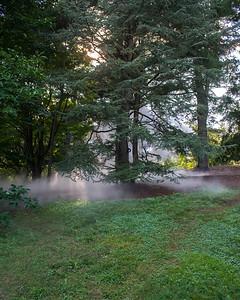 Arboretum0823-25