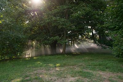 Arboretum0823-14
