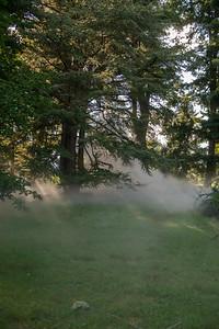 Arboretum0823-16